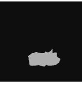 MoBaW-Logo-FRIENDS-Mono-LIVE